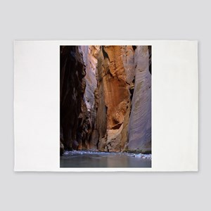 Zion Ntional Park 5'x7'Area Rug