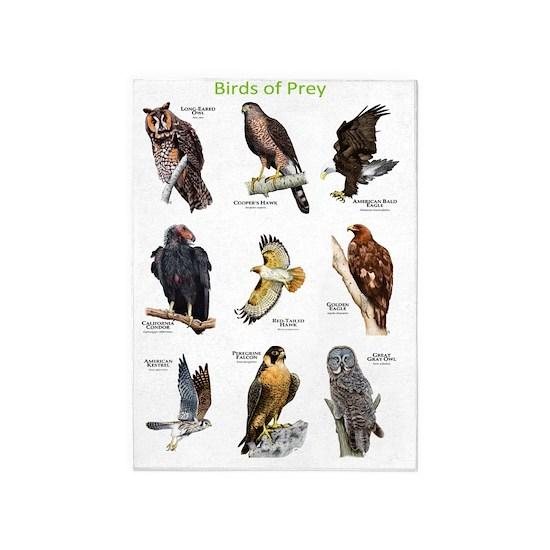 Birds Of Prey 5 X7 Area Rug By Wildlife Art By Roger Hall Cafepress