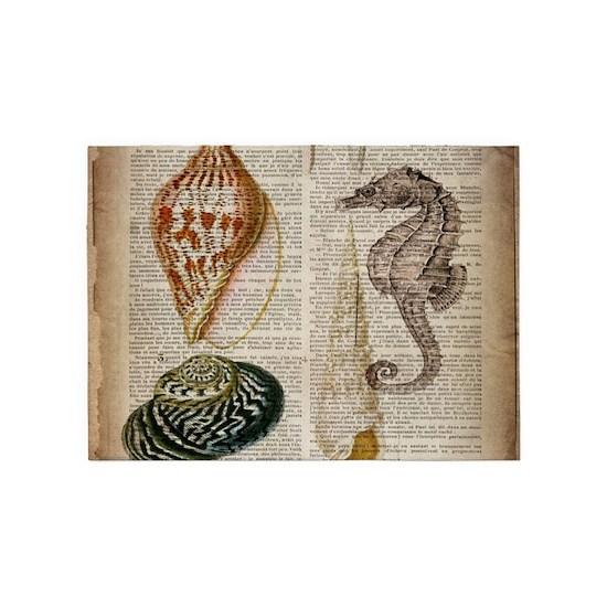 coastal beach sea shells