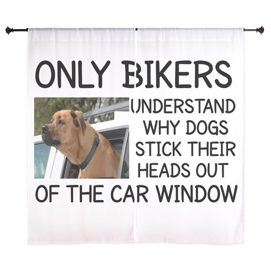 ONLY BIKERS UNDERSTAND WHY DOGS STICK THEIR HEADS