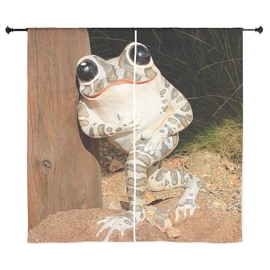 Happy frog with big eyes