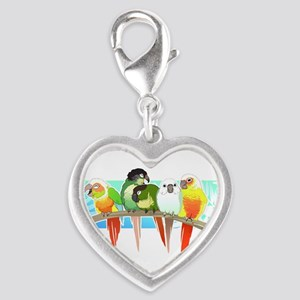Green Cheek Conures Charms