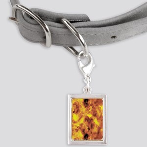 Raging Inferno Small Portrait Pet Tag