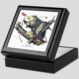 Audubon Opossum Possum Keepsake Box