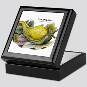 Banana Slug Keepsake Box