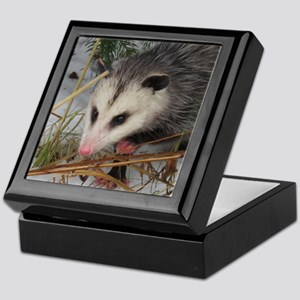 Snow Possum Keepsake Box