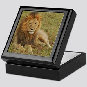 male lion kenya collection Keepsake Box