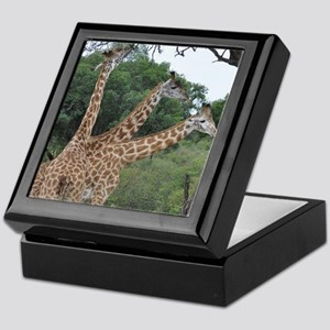 three giraffes Keepsake Box