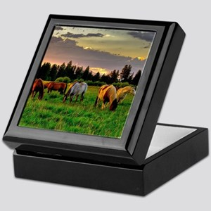 Horses Grazing Keepsake Box