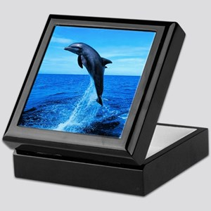 Dolphin Frolicking Keepsake Box