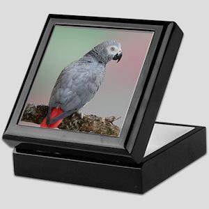 African Grey Parrot Keepsake Box
