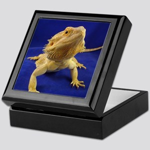 Bearded Dragon Keepsake Box
