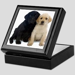 Black and White Labrador Puppies. Keepsake Box
