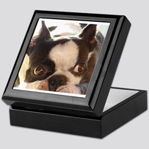 Adorable Jewels Keepsake Box