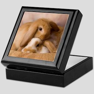 Cuddle Bunnies Keepsake Box