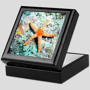 Pretty Starfish Keepsake Box