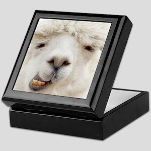 Funny Alpaca Smile Keepsake Box