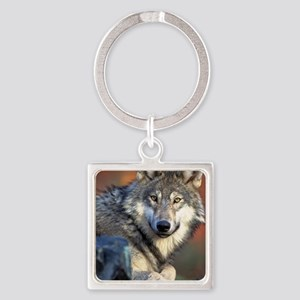 Awesome Gray Wolf Square Keychain