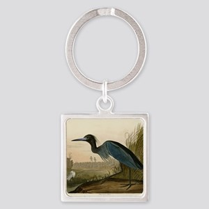 Audubon Blue Crane Heron from Birds of America Key
