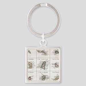 Vintage Islands of The Caribbean Map (17 Keychains