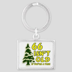 66 Isnt old Birthday Landscape Keychain