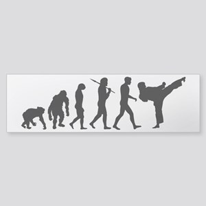 Martial Arts Evolution Sticker (Bumper)