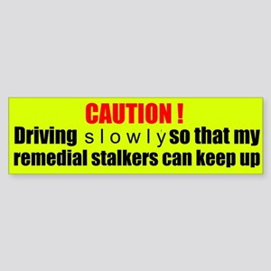Remedial Stalkers Sticker (Bumper)