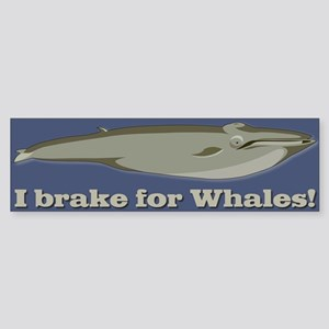 Whale Bumper Sticker