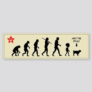 PUG EVOLUTION - Bumper sticker