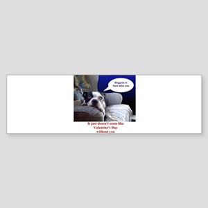 Sunnys Boston Terrier Bumper Sticker