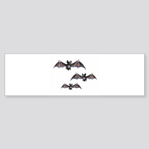 Bats Bumper Sticker
