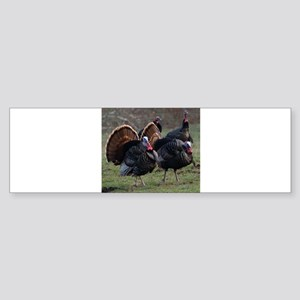 Four Gobblers Bumper Sticker