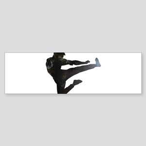 Karate Kick Bumper Sticker
