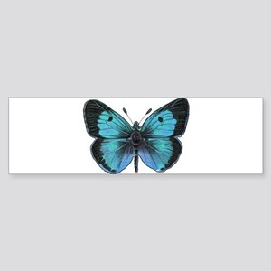 Ulysses Butterfly Sticker (Bumper)