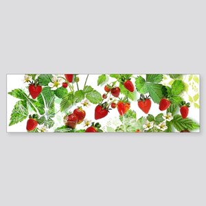 Ripe Strawberries from Provence Bumper Sticker