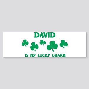 David is my lucky charm Bumper Sticker