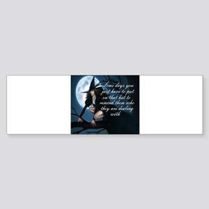 Witch Bumper Stickers - CafePress