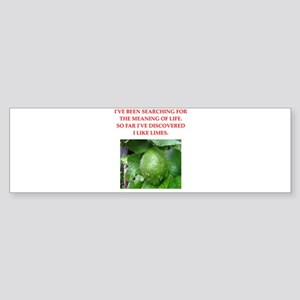 Meaning Bumper Stickers - CafePress