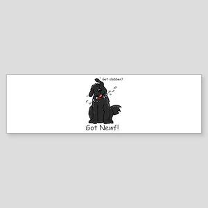 NS - Bumper Sticker