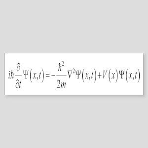 Schrodinger Wave Equation