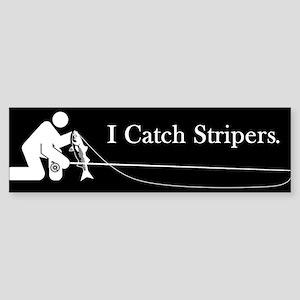 """""""I Catch Stripers"""" Bumper Sticker"""