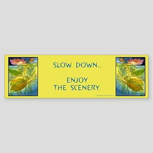 """""""Slow Down..Enjoy the Scenery..""""Bumper Sticker"""