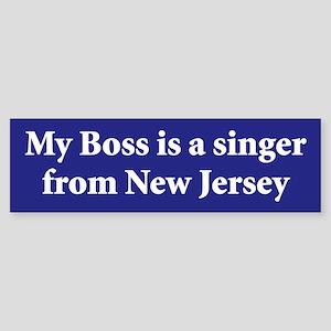 Bruce Springsteen Bumper Sticker