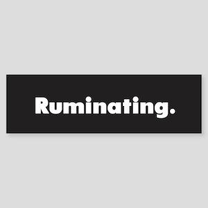 Ruminating /FenderFlash