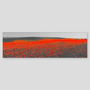 Poppy Field - Remember Bumper Sticker