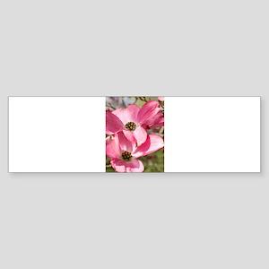 twin blossoms Bumper Sticker