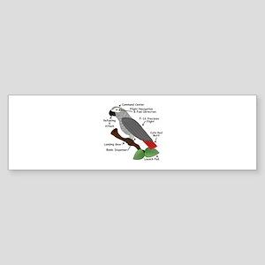 Anatomy of an African Grey Parrot Bumper Sticker