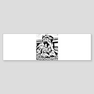 TEENAGE BRIARD Bumper Sticker