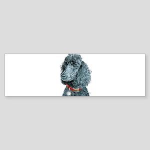 Black Poodle Whitney Sticker (Bumper)