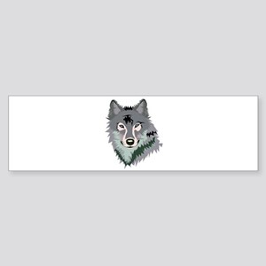 STARE Bumper Sticker